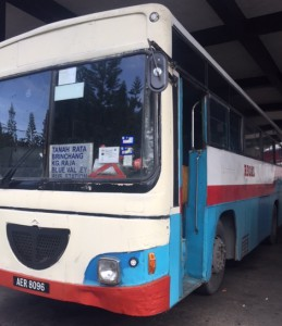 Local Bus in Cameron Highlands
