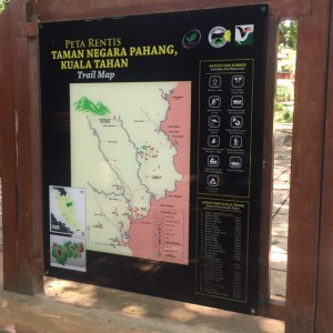 Taman Negara National Park Trail Guide